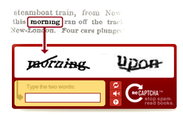 Google re Captcha