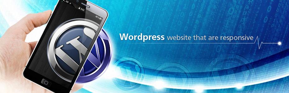 Outsource Wordpress Developer & Designer