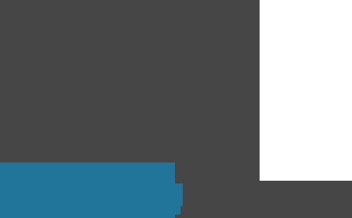 Original Wordpress Logo